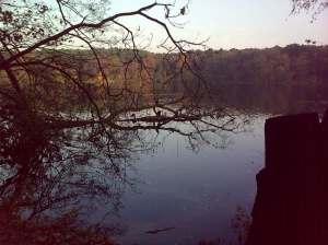 Zum Krebs gehört der See (hier der Schlachtensee)